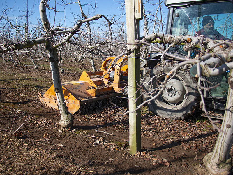 heavy-duty-pruning-mulchers.6.jpg